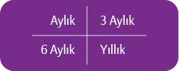 geri_odeyen_1